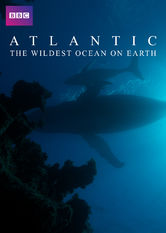 Atlantic: The Wildest Ocean on Earth Netflix KR (South Korea)