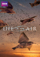 Life in the Air Netflix KR (South Korea)