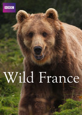 Wild France Netflix KR (South Korea)